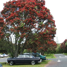 RG Grant   1970 Rover P5B Coupe bought in Sydney 1980